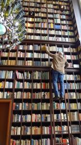 11 Meter Bücherwand. Die Leiter reicht nicht bis oben.