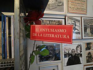 Prägt die Bücherauswahl: Die Begeisterung für die Literatur