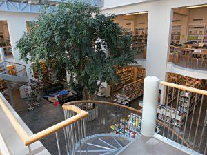 Blick von der ersten Etage (Kinder- und Jugendbibliothek) ins Erdgeschoss, riesiger Ficus