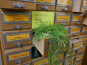 Pflanze im Zettelkasten